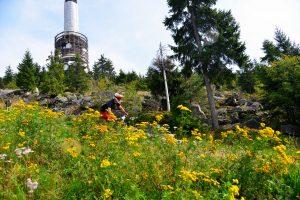 Downhill am Ochsenkopf