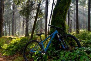 Mountainbike Touren zum Ochsenkopf und Schneeberg